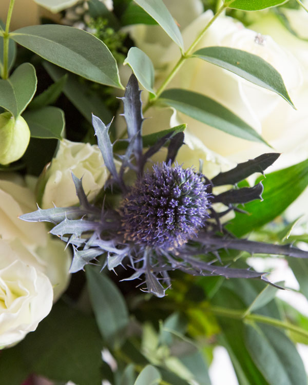 Purple thistle in brides bouquet surrounded by green leaves and white roses