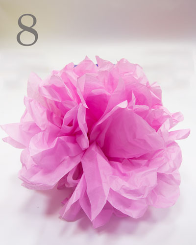 Fully formed pink tissue paper pompom on white backdrop