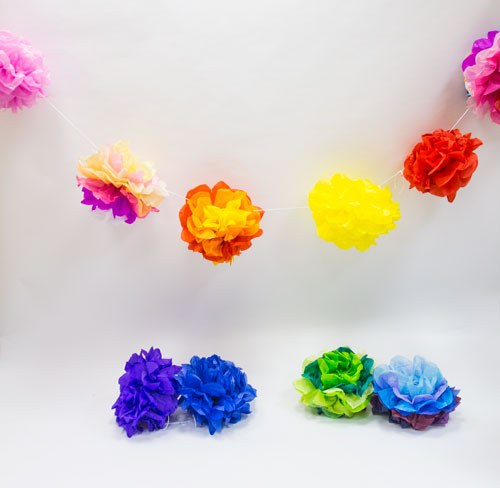Multi coloured pompoms on white backdrop