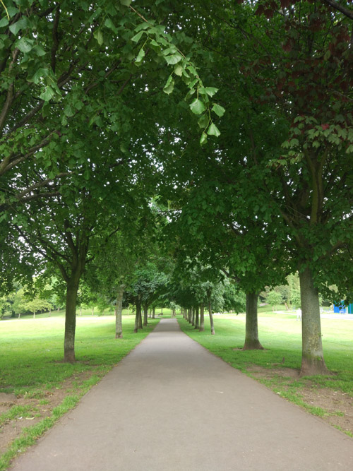 Entrance to Locke park through the line of trees at eitehr side of the path