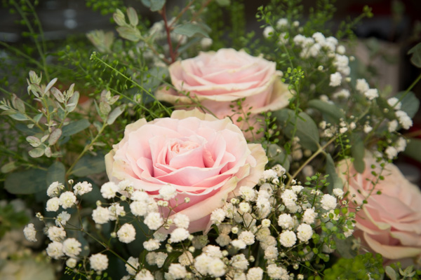 Pink roses with white gypsophillia surrounded by foilage