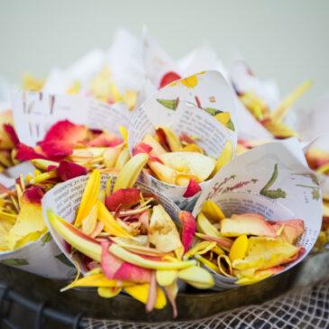 How To Make Biodegradable Confetti