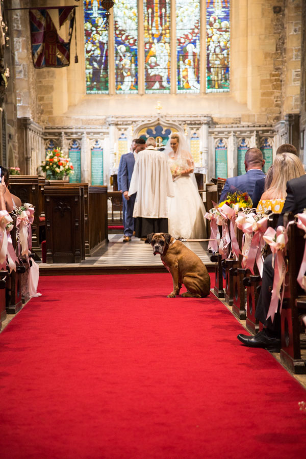 Meg the dog looking down the aisle at Wath church