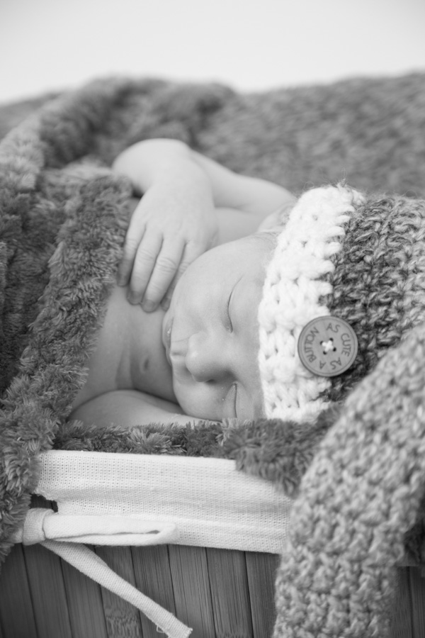 bump to baby session newborn photography at Charlotte Elizabeth Photography South Yorkshire