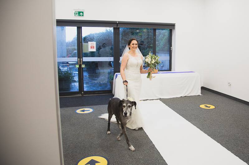 Bride walking down the aisle with her dog South Yorkshire Wedding Photographer